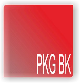 aplikasi pkg guru bk 2017/2018