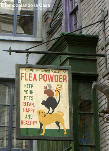 Halloween green and yellow sign for clean pets