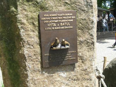 placa-comemorativa-pentru-primele-foci-din-zoo-praga