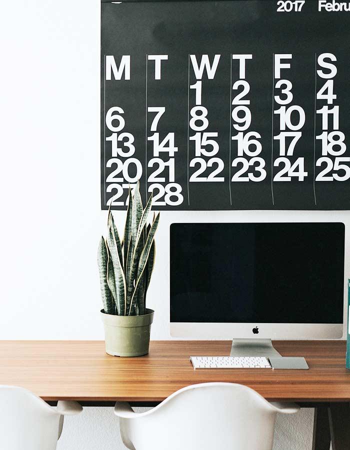 Sansevieria em vaso utilizada como planta ornamental na decoração de escritório minimalista.