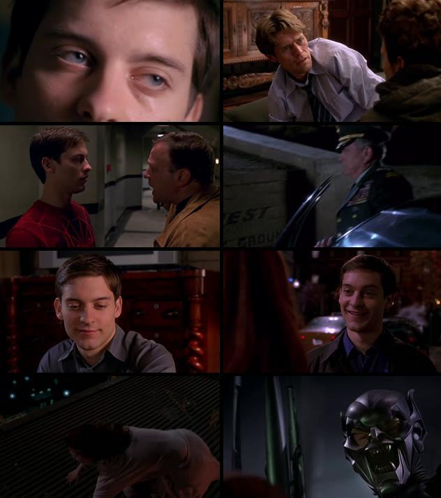 Spiderman 2002 Dual Audio Hindi 720p BluRay