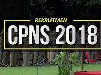LOWONGAN CPNS 2018 DIBUKA BESAR-BESARAN