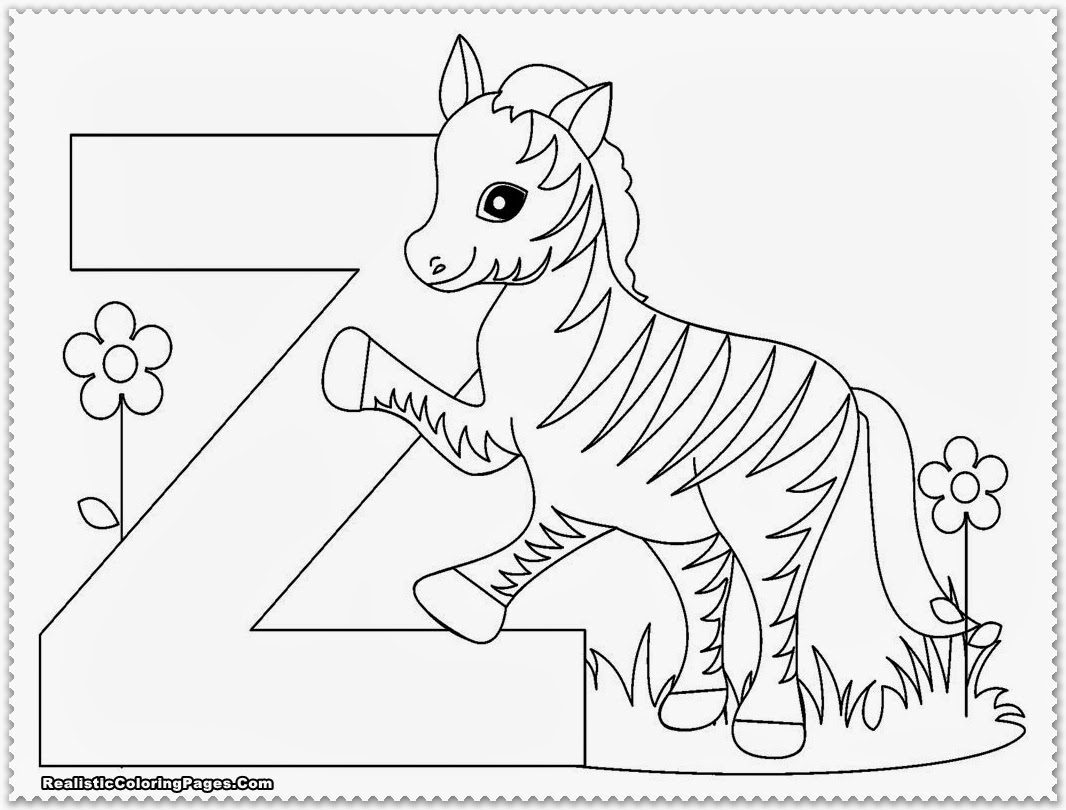 Zoo Animals Preschool Coloring Pages - Kidsuki | free printable colouring pages zoo animals