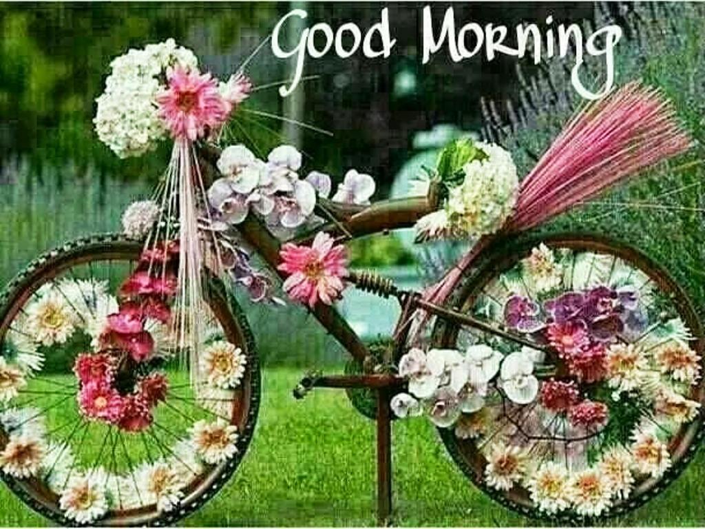 Hd wallpaper good morning - Good Morning Hd Wallpapers