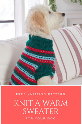 Free Knitting Pattern for a Dog Sweater