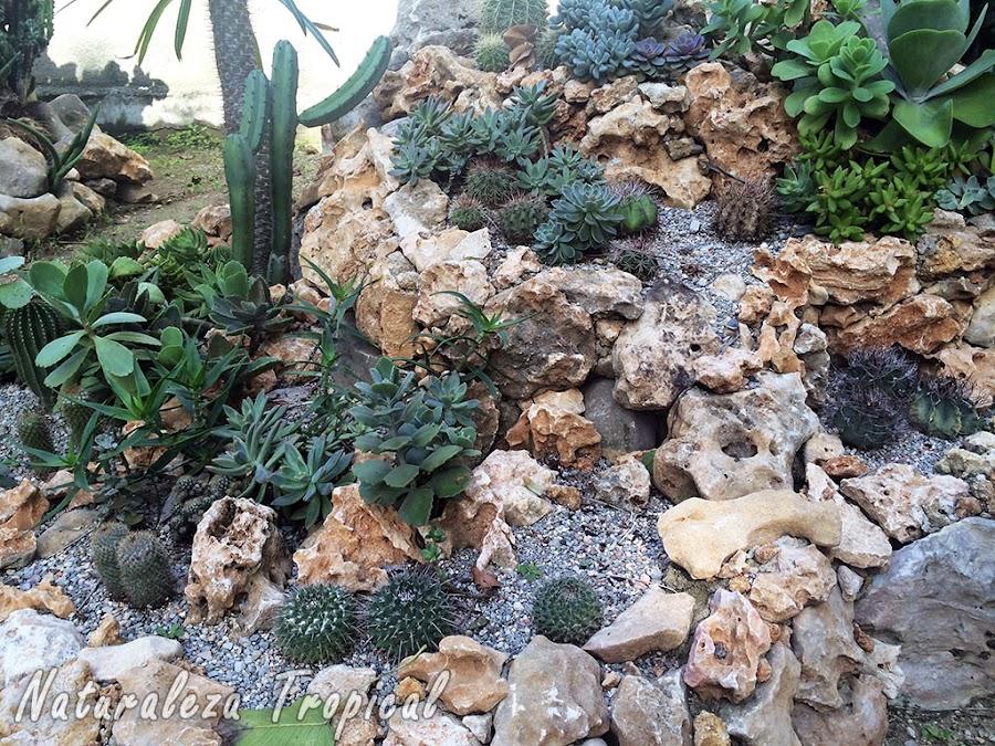 Jardín xerófilo con diferentes niveles elaborado con rocas