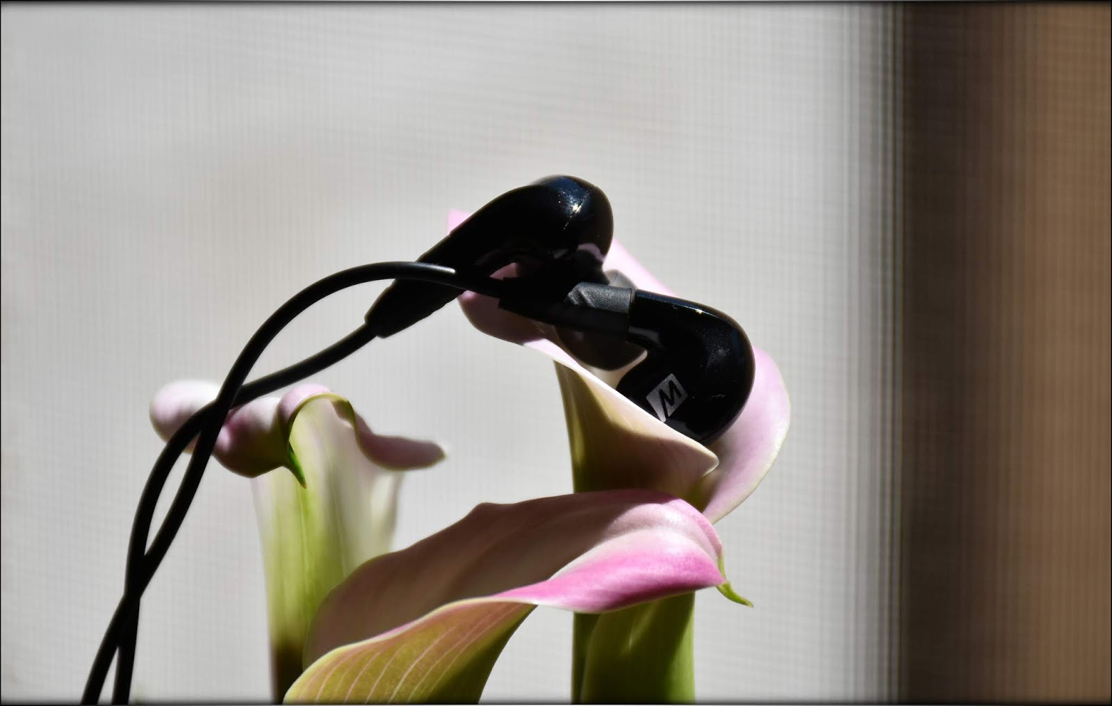 Mee-Audio-P2-Pinnacle-Review-Audiophile-Heaven-02.jpg