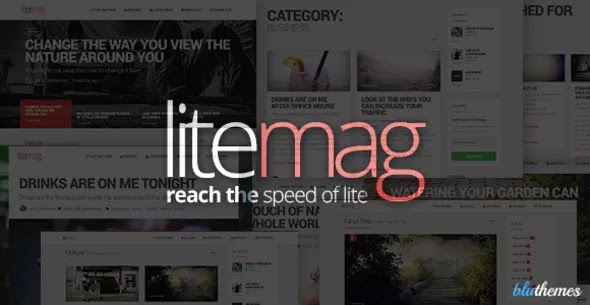LiteMag v1.5.0 – Easy to use Minimalist Magazine Theme