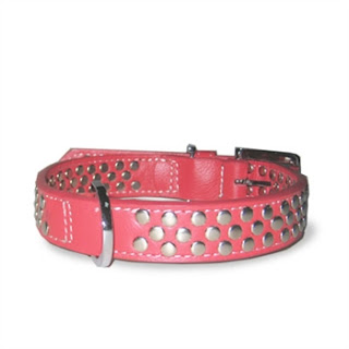 STUD COLLAR IN RED