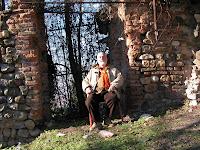 Risultati immagini per paolo d'arpini l'oro di fort knox è falso