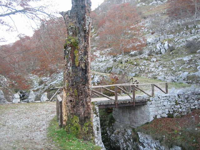 Puente sobre el Pozo del Alemán
