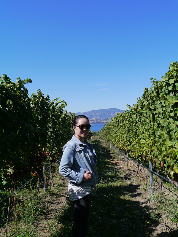 Vancouver beauty and lifestyle blogger Solo Lisa stands among the vines at JoieFarm Winery in Naramata Bench, Okanagan, BC wine country