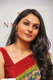 Andrea Jeremiah Pictures in Saree at Nathella Jewellery