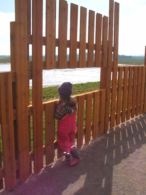 brand new bird hides at steart marsh in somerset