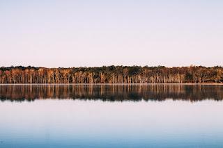 Une forêt se reflète dans le lac. Le ciel est bleu.