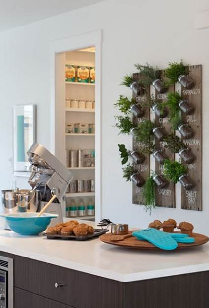 Tips For Decorating The Kitchen With Hanging Plants 6