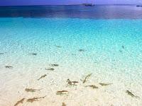 Pulau Romantis guna Dikunjungi Bersama Pasangan