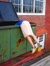 Frugal Dumpster Diving : frugal, dumpster, diving, Famously, Frugal, Family:, Dumpster, Diving:, Manifesto