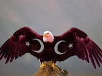 Bağımsızlık Kartal ve Türk Bayrağı, Ay Yıldız