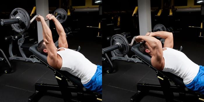 تدريبات عضلات التراى ل Eduardo Correa