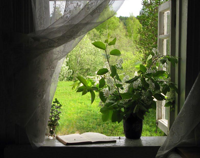 Imagem de janela aberta