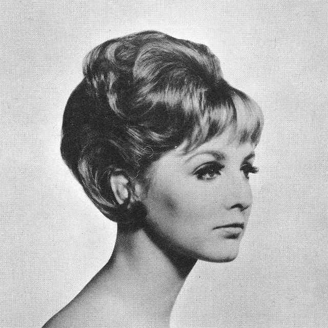 Pictures of Beautiful Female Hairstyles of the 1960s ...