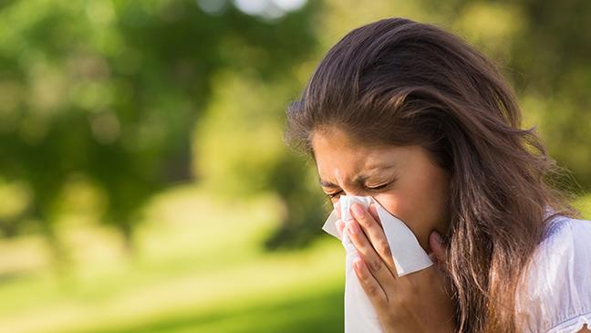 hay fever, sinus, sinusitis