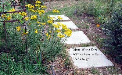 Divasofthedirt,grass in path