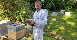 This French Farmer Trained His Bees To Make Honey From Weed ( Marijuana ) – See How