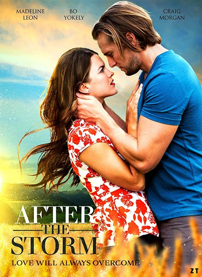After The Storm [WEBRip] [Streaming] [Telecharger]