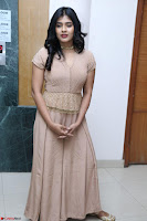 Hebah Patel in Brown Kurti and Plazzo Stuunning Pics at Santosham awards 2017 curtain raiser press meet 02.08.2017 015.JPG