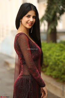 Kashish Vohra looks Beautiful Cute and Innocent beauty in Brown Transparent Velvet Gown ~ Exclusive 003