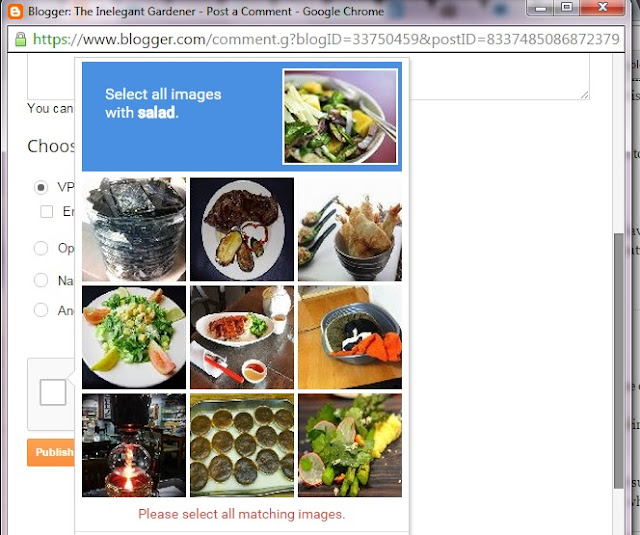 Picture of salad images used in the latest captcha development
