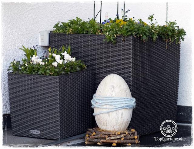 Gartenblog Topfgartenwelt Topfgarten + DIY mit Knagglig (Kiste) und Töpfen viel Platz auf kleinem Raum schaffen - Blumendeko mit Hornveilchen und Bellis passend für den Frühling und Ostern: österliche Gestaltung des Eingangsbereichs