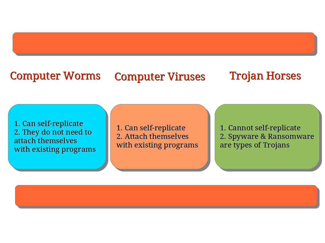 What is the difference between viruses, worms, and Trojans?