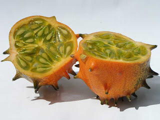 horned melon fruit images
