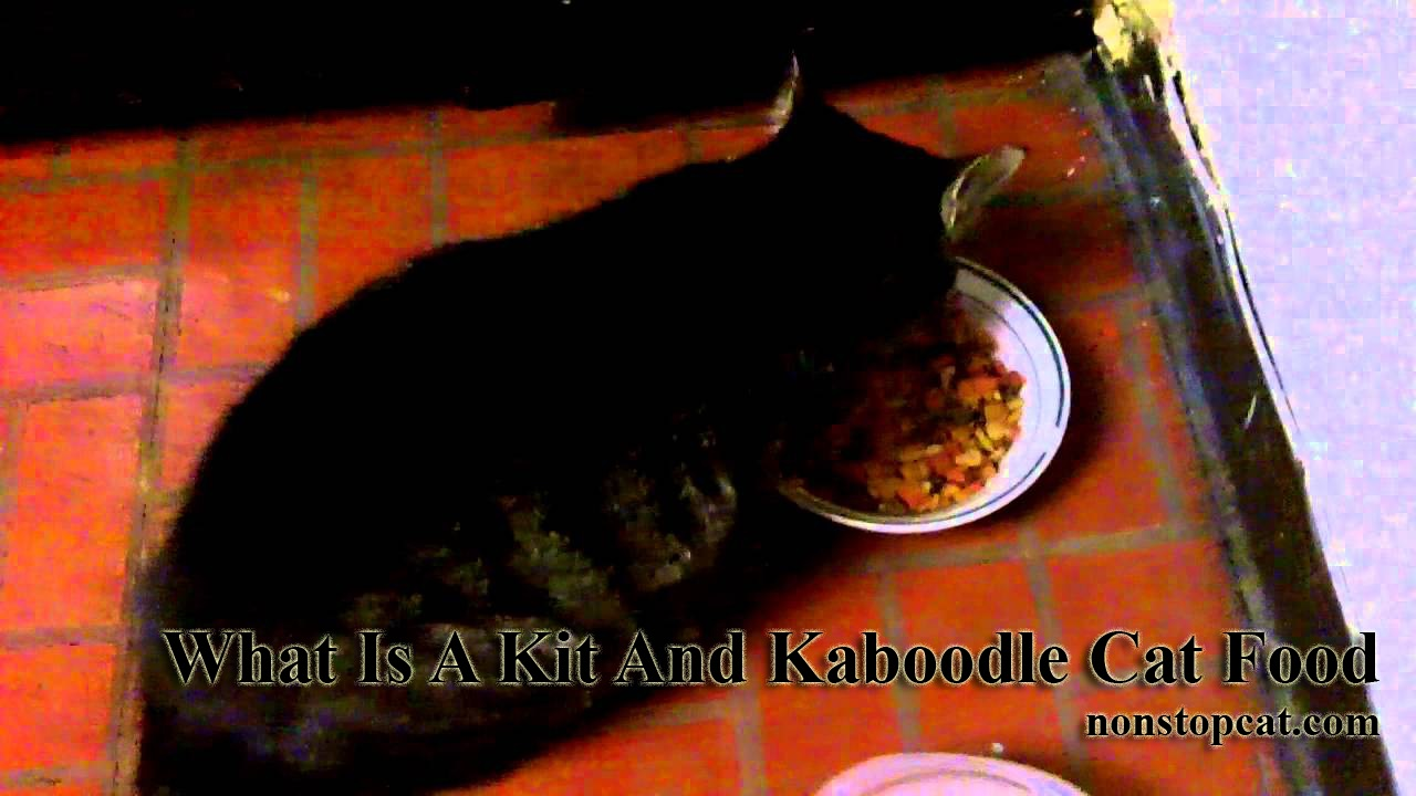 What Is A Kit And Kaboodle Cat Food
