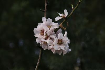 http://yannisstavrou.blogspot.com
