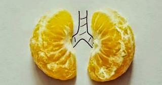 Μανταρίνι – το μοναδικό φρούτο που αποβάλλει από τον οργανισμό τα βαρέα μέταλλα