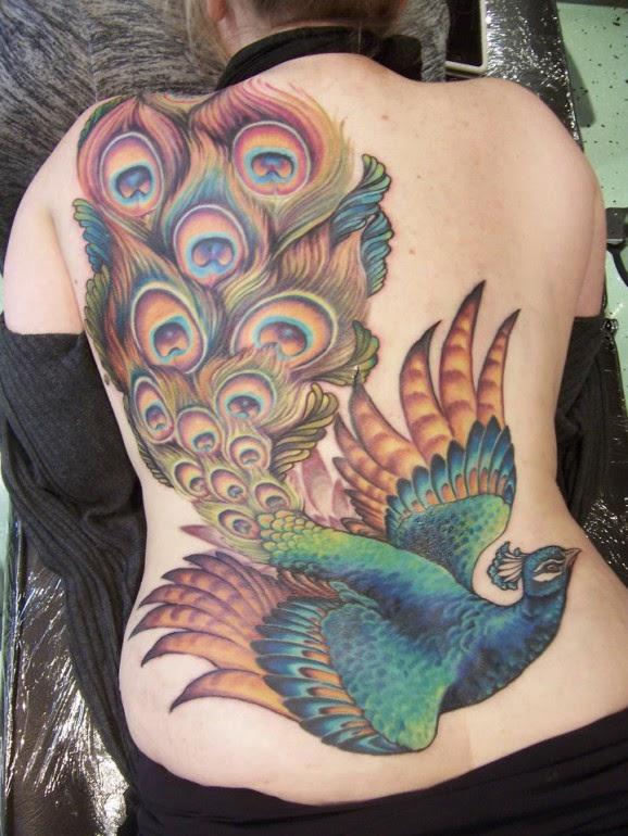 Peacock Tattoo: Peacock Tattoo