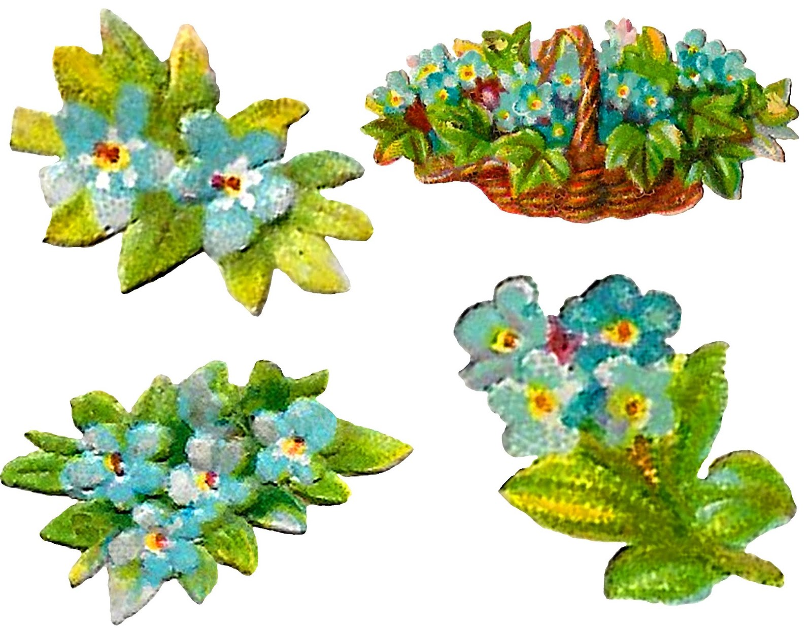 flower floral images collage sheet download forget me not clipart [ 1600 x 1237 Pixel ]