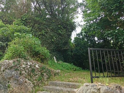 高岩(タカシー)の写真