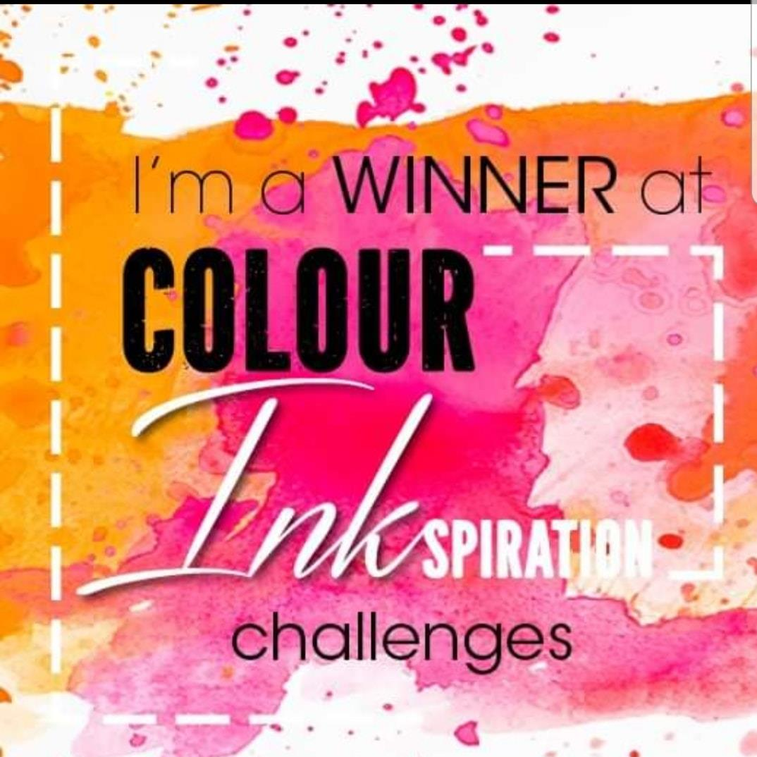 winner colour Ink