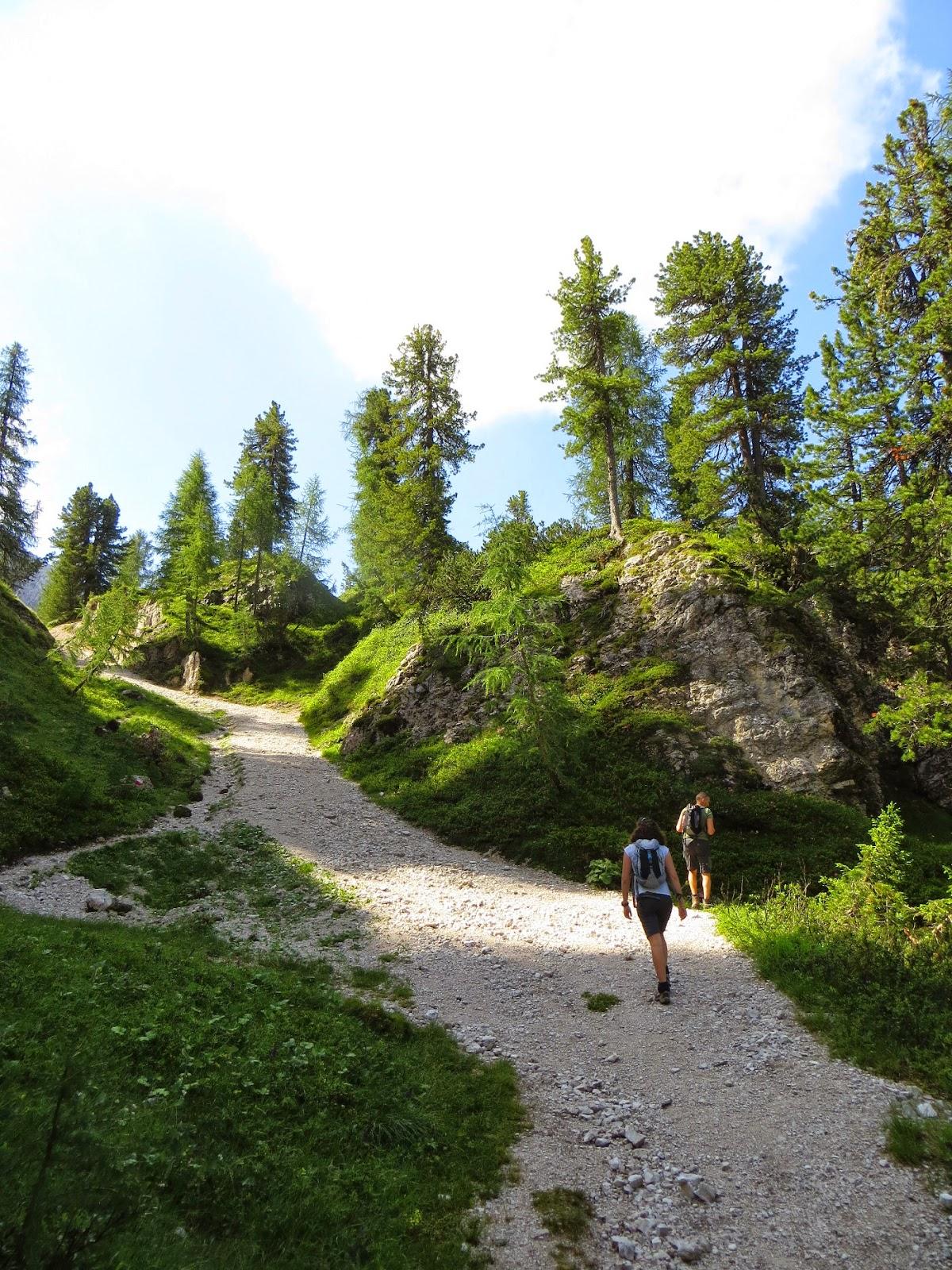 escursione al rifugio capanna tondi faloria