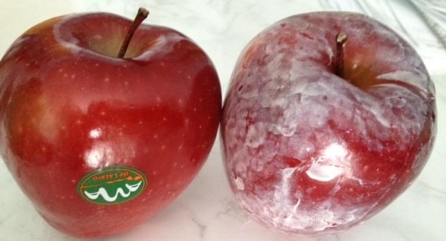 apple, wax, pesticide