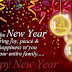 Happy new year 2016 quotes images, pics, pictures and history