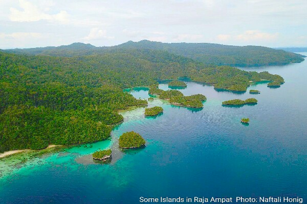 Drone picture of Raja Ampat