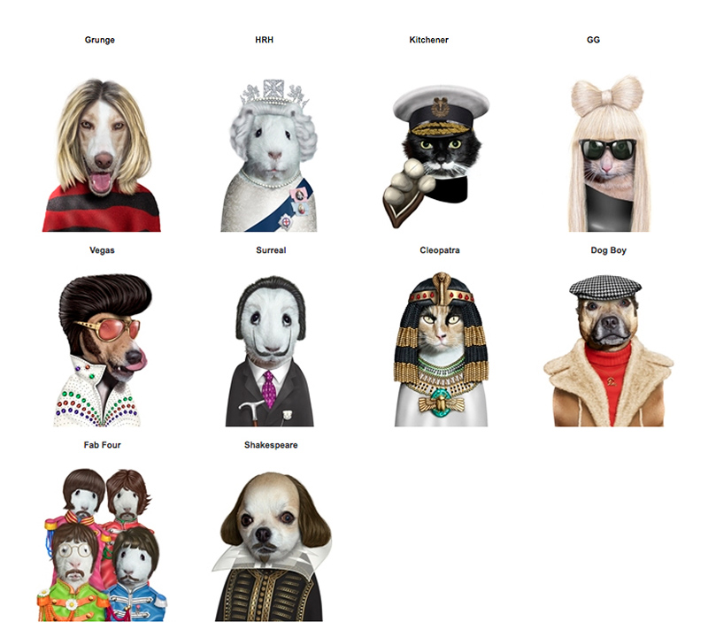 pets as celebrities