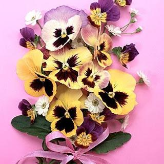 Цветок, соответствующий имени Анна