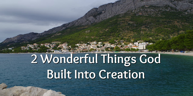 The God of Pleasing Practicality 2 things God Built Into His Creation